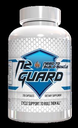 n2-guard-png.png